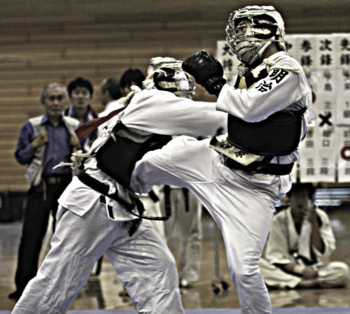 Nippon Kempo Nancy